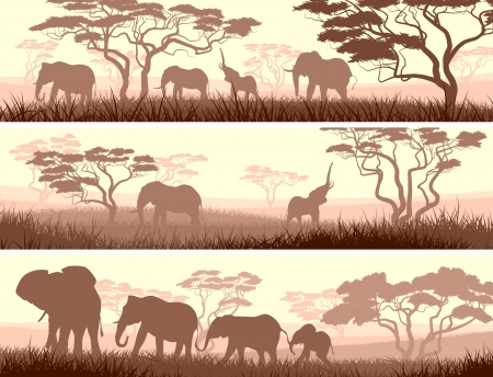 Horizontal abstract banners of wild elephants in African savanna with trees.