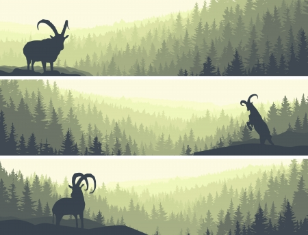 Horizontal abstract banners of hills of coniferous wood with mountain goats in green tone. Vector