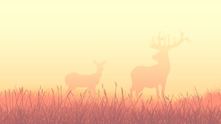 horny: Horizontal landscape illustration of deers on morning misty meadow (orange tone).