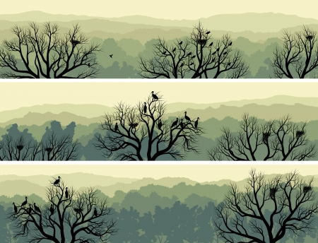 Set horizontal banners of green forest with nest in tree and birds (green tone).