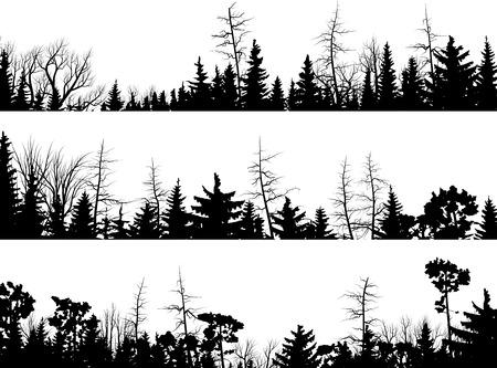 houtsoorten: Set van vector silhouetten horizontale naald boomtoppen bos (den, spar, ceder). Stock Illustratie