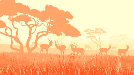 steppe: Horizontal illustration of herd antelope in African savanna with trees. Illustration