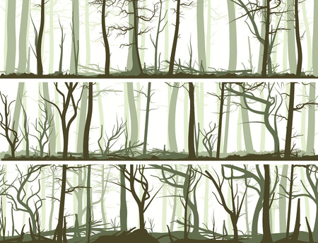 grove: Set vector horizontal banners with many tree trunks (coniferous,deadwood and deciduous forest).