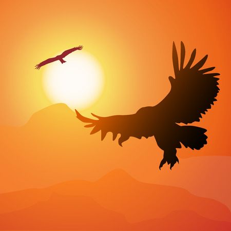 wildwest: Square illustration of soaring eagle on background sunset.