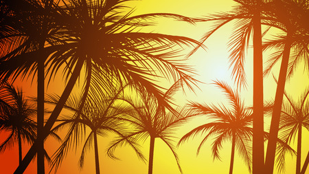 tropical beach panoramic: illustration of silhouettes beach large palms with sunlight.