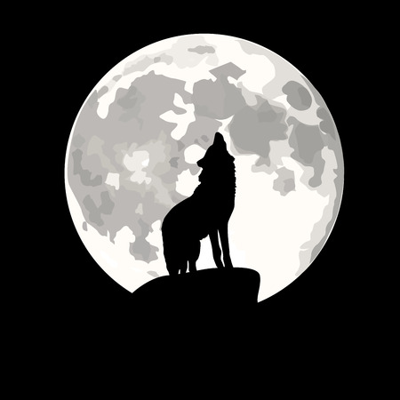illustration of wolf howling at moon in night. Vector