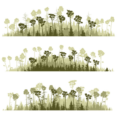treetop: horizontal lines of green silhouettes coniferous forest (pine, spruce, cedar). Illustration