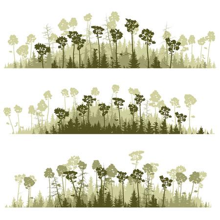 coniferous forest: l�neas horizontales de siluetas verdes bosques de con�feras (pino, abeto, cedro).