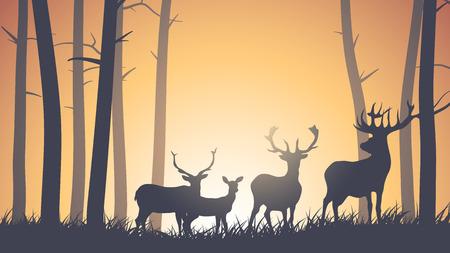 Vector horizontal illustration of wild deer in forest sunset. Vector