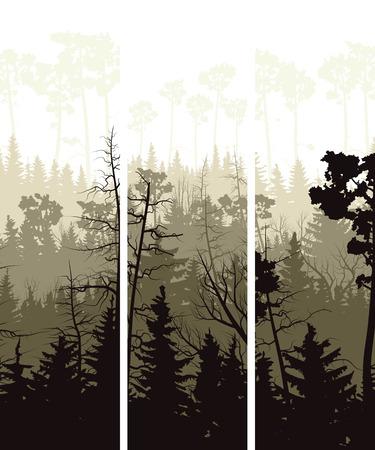 Set vector vertical banners of coniferous treetops forest (pine, spruce, cedar).