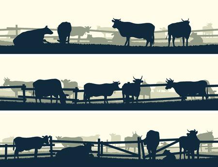 울타리 (암소와 황소)와 함께 농장 동물 방목의 수평 벡터 배너 실루엣.