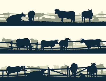 Horizontal vector banner silhouettes of grazing farm animals with fence (cows and bulls).   Ilustração
