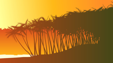 tropical beach panoramic: Horizontal vector illustration of palm trees on beach at sunset. Illustration