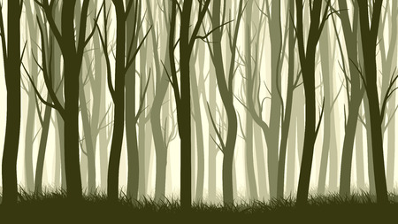 Vector horizontal illustration of misty forest with trees. Stock Illustratie