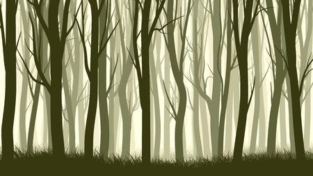 tronco: Vector horizontal ilustración del bosque de niebla con los árboles.