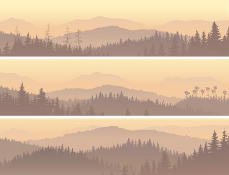 montagna: Impostare banner orizzontale di foresta di conifere selvaggia in nebbia di mattina.