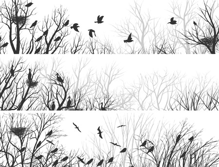 Set horizontal abstract banners of forest with nests in trees and birds. Vector