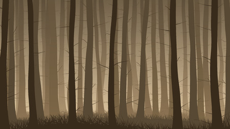 horizontal illustration of misty coniferous forest with grass.