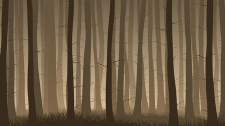 coniferous forest: ilustraci�n horizontal del bosque de con�feras brumosa con hierba.