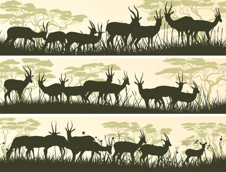 horizontal banner: Set horizontal banners of herd antelope in African savanna with trees. Illustration