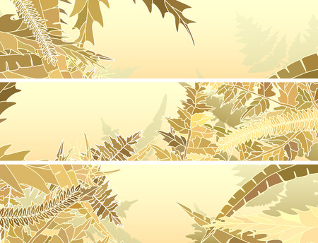 frondage: Set horizontal abstract banners of many different yellow herbs and grass.