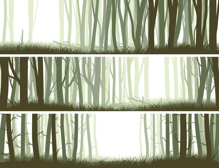 panorama: Set horizontal banners inside misty forest with trunks of trees.