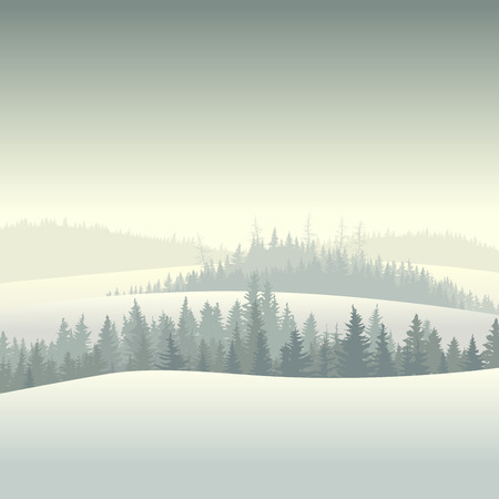 pine tree silhouette: Vector illustration of snowy morning coniferous forest valley.