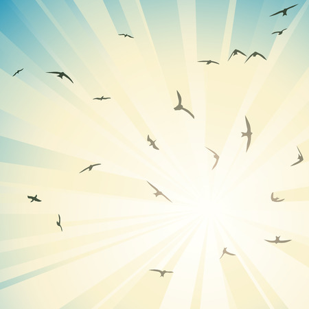 Square abstract illustration birds circling in rays of bright sun.