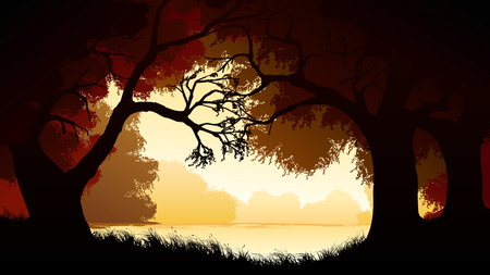 deciduous: Vector horizontal illustration of view from deciduous forest with trees at lake.