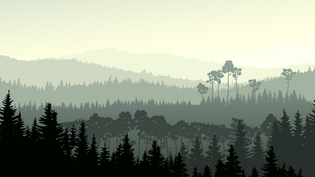 Vector horizontal panorama of wild coniferous forest in green tone. Vectores