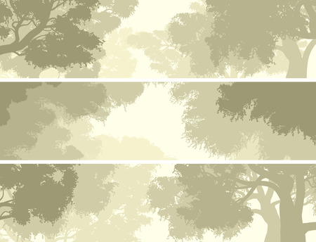 pale green: Set horizontal banners of crown of deciduous trees against the sky in pale green tone.