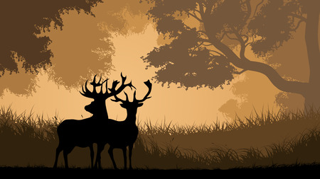 Vector horizontal illustration pair of wild deer in forest sunset.