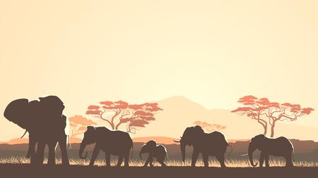 Horizontal vector illustration wild herd of elephants in African sunset savanna with trees.