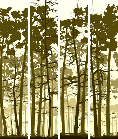 Set vertical banners wild forest with trunks of pine trees. Illustration