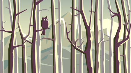 fog forest: Abstract horizontal illustration of forest with trees and owl on branch
