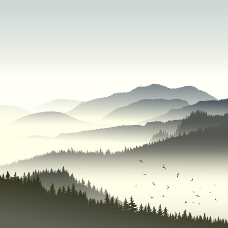 fog: Square illustration morning misty coniferous forest on hills in fog with flock of birds.