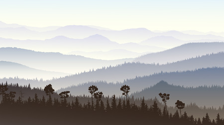 fog forest: Horizontal illustration morning misty coniferous forest hills in fog.