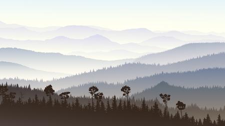 coniferous forest: Ilustraci�n Horizontal ma�ana colinas brumosas bosque de con�feras en la niebla.
