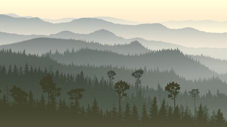 coniferous forest: Horizontal illustration of morning misty coniferous forest hills. Illustration
