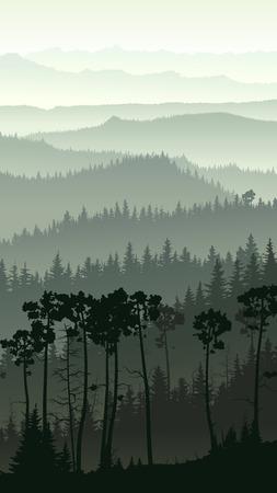 coniferous forest: Ilustración vertical de la mañana brumosa colinas del bosque de coníferas. Vectores