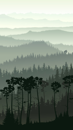 Vertical illustration of morning misty coniferous forest hills.