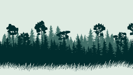 thick forest: Horizontal abstract illustration of green coniferous forest with grass. Illustration
