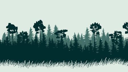 coniferous forest: resumen de la ilustraci�n horizontal del bosque verde de con�feras con la hierba. Vectores