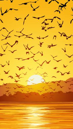 bandada pajaros: Vertical ilustración bandada de pájaros al atardecer cerca de la costa. Vectores