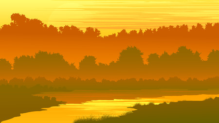 river bank:   illustration of forest thickets on river bank at sunset. Illustration