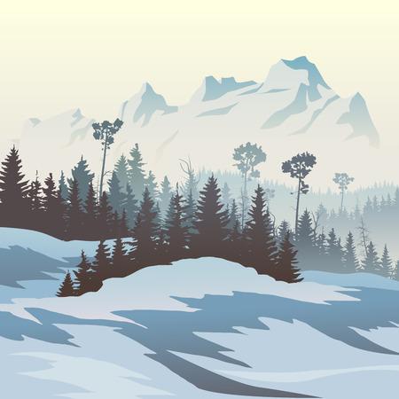 coniferous forest: ilustración vectorial cuadrado del valle nevoso bosques de coníferas de montañas. Vectores