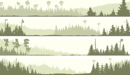 misty forest: Set vector horizontal banners of misty coniferous forest hills with glades (green tone).