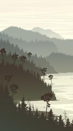 coniferous forest: Vertical ilustraci�n de la ma�ana brumosa colinas de bosques de con�feras en la costa rocosa.