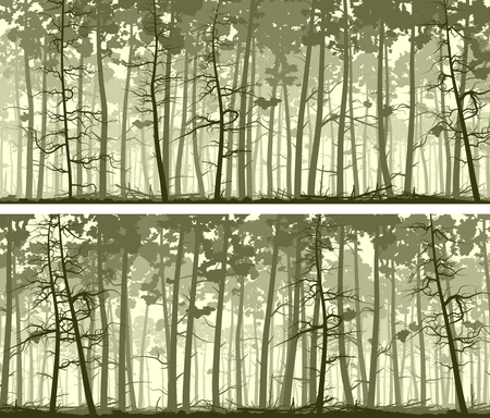 Set of horizontal abstract wide banners forest with trunks of pine trees.