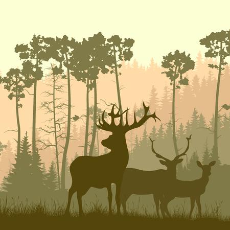 Vector illustration carré de pâturage cerfs famille dans le pré sur fond de forêt de pins.